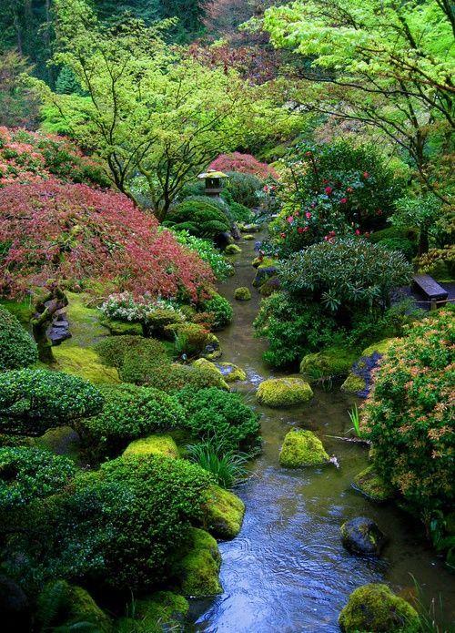 25 beste idee n over japanse tuin op pinterest blauwe regenboom blauweregen en japanse tuinen - Kleine tuin zen buiten ...