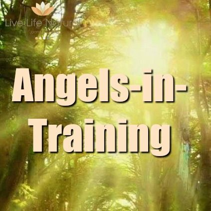 Angels-in-Training - Live Life Natural