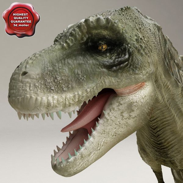 close up detailed dinosaurs - Google Search