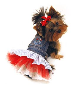Pet Clothes Denim Nautical Dog Dress.  dress for chocolate.