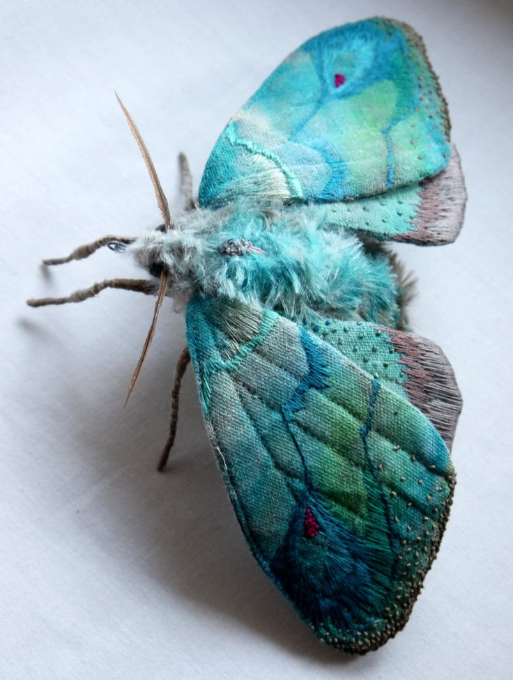 Fabric sculpture Large Turquoise Moth textile art by YumiOkita. This moth is about 4 inch tall and 9 inch wide. The wings are made from cotton fabric and the body is made from fake fur. It is hand painted and hand embroidered with details. The antennas is made from feather. There is metal hook on the underside for hanging.