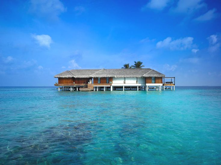 Velaa-Private-Island-Hotel-Resort-Luxury-Travel-7.jpg