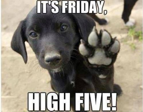 Happy Friday  to You :D