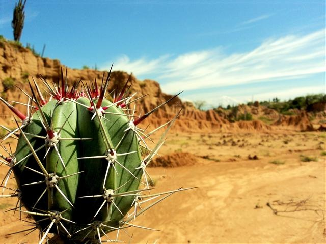 La punzante belleza del desierto de la Tatacoa en #VillaVieja #Huila. #FotoDelDia EnMiColombia.com
