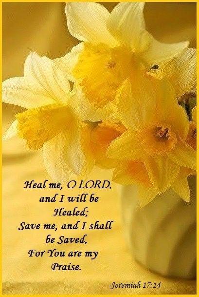 Jeremiah 17:14                                                                                                                                                                                 More