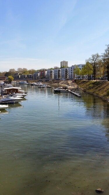 Mainz am Winterhafen