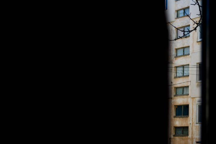 rear window(d,f.)