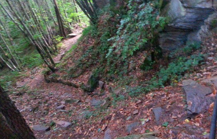 Le chemin, escarpé, pour monter au Puy de Pauliat