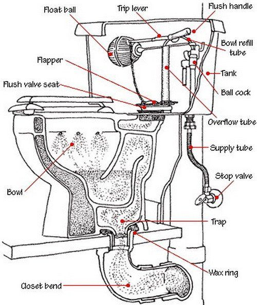 Toilet Is Not Clogged But Drains Slow And Does Not Completely Empty
