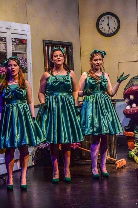 Little Shop of Horrors Costume Hire