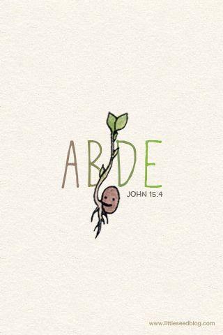 Abide John 15:4