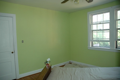 Sherwin Williams Gleeful For My Home House Color