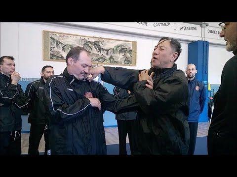 SUPER SPEED WUXING TONGBEI QUAN FIGHT TECHNIQUES & APPLICATIONS M GUAN TIEYUN - YouTube