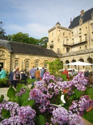 Château de la Roche Guyon - La Roche-Guyon -