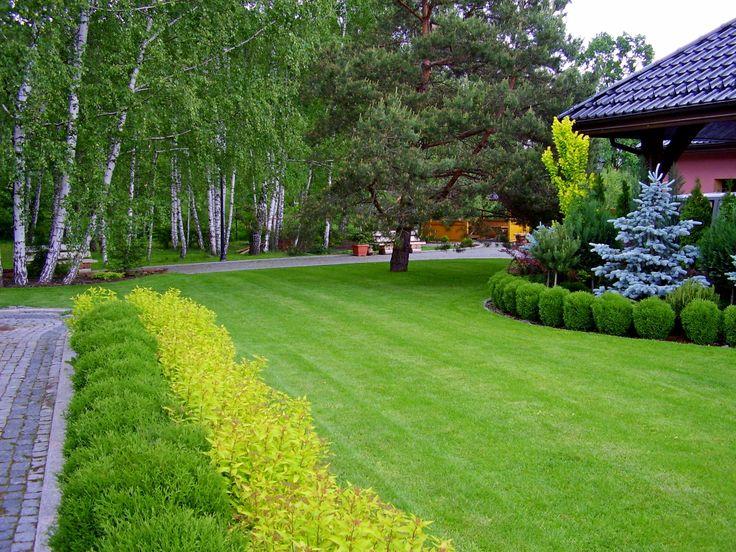 Ogrody Kielce. Ogród przydomowy w otoczeniu wiekowego lasu.