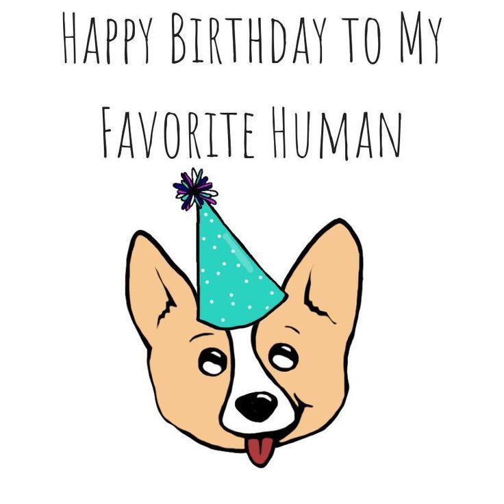 Dog pun card puns play on words birthday card