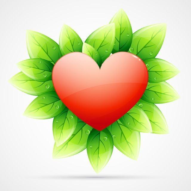 حب القلب مع الأوراق الخضراء القلب المحب قلب أحمر ناقلات القلب Png صورة للتحميل مجانا Love Heart Green Loving