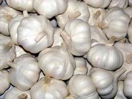The company has made its mark in the global markets as an Exporter & Supplier of Fresh Garlic.