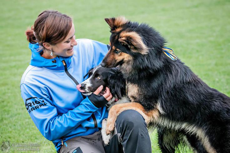 Who can win just for the fun of it? A czechgirl participated in a discdog competitionin for fun, and won! Read about the world champion in disc dog. https://www.morrr.com/en/blog/article/schonova-compares-disc-dog-to-figure-skating…