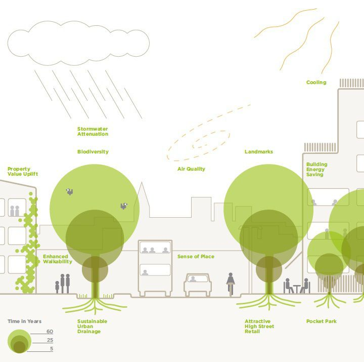 Image 1 of 2 from gallery of The Planners' Guide to Trees in the Urban Landscape. via www.tdag.org.uk