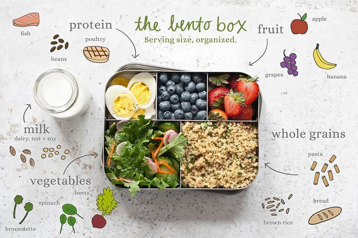 Organic Bound - The Most Helpful Lunch Box Ever Lunch is an important way to…