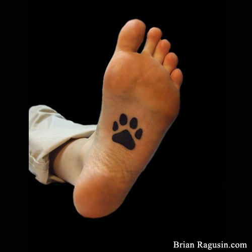 Paw Print Toe Tattoo: 17 Best Images About Tattoos And Piercings! On Pinterest