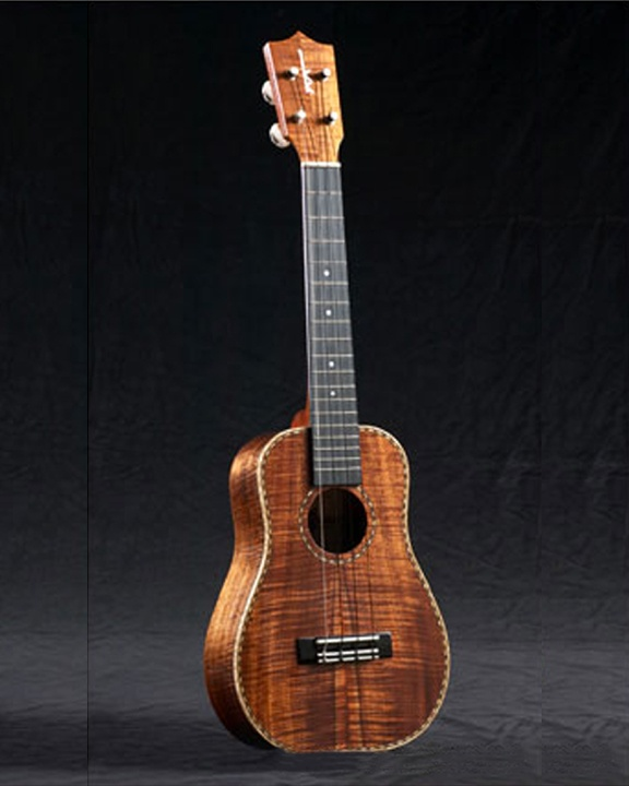 143 best ukelele images on pinterest for Housse ukulele concert