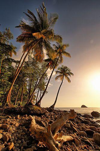 Martinique..