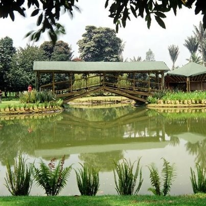 Jardín Botánico - Bogotá