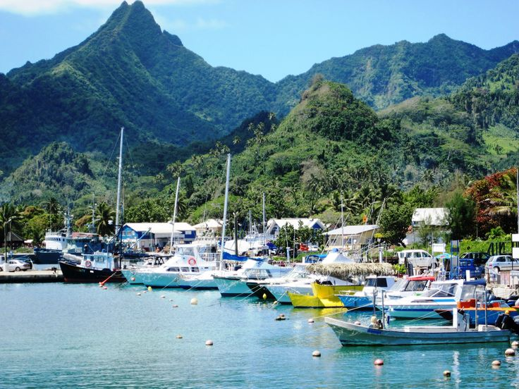 All the boats ready for a day out on the water! #muribeachclubhotel #boats #fishing #snorkelling