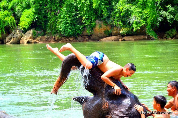 Elephant Trekking and Swimming in Thailand (Kanchanaburi)
