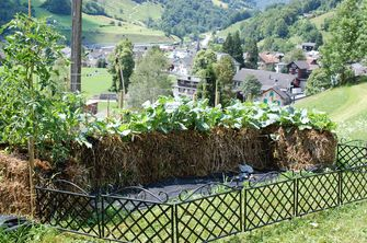STROHBALLENGARTEN - Mit Strohballen gärtnern und staunen
