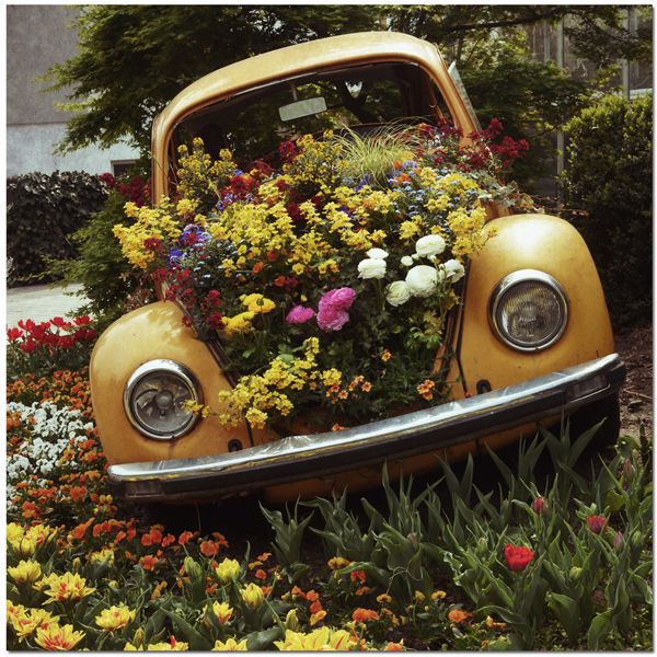 If I had a huge garden I'd love to fill it with junk and then fill the junk with flowers, so cool!
