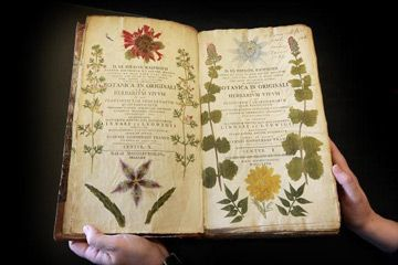 This rare 18th century book on botany is on display at the Herbarium library of London's Royal Botanic Gardens.    Peter MacDiarmid/Getty Images
