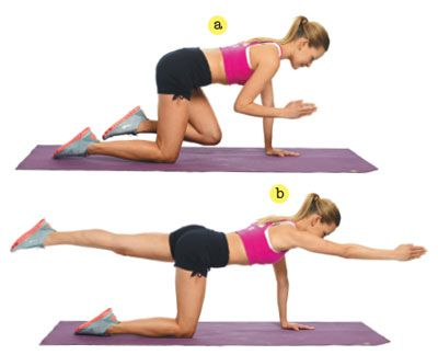 Top 12 Exercises