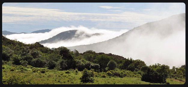 Soutpansberg area, Limpopo Province - Google Search