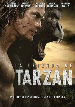 """Ver película La leyenda de Tarzan online latino 2016 gratis VK completa HD sin cortes descargar audio español latino online. Género: Aventura, CAM Sinopsis: """"La leyenda de Tarzan online latino 2016"""". """"The Legend of Tarzan"""". Son muchos los años que han pasado desde que Tarzán (Ale"""