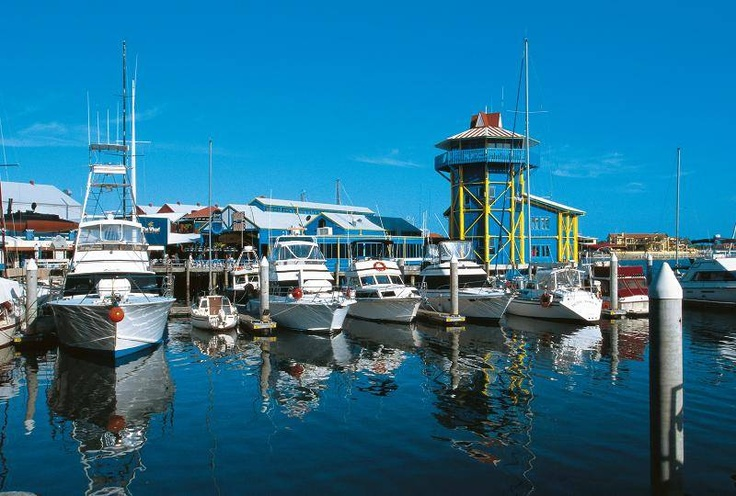 Planning Your Mooloolaba Holiday - Boat tours from the wharf of Mooloolaba are a great way to get out on the water and watch its wildlife, go fishing, diving or snorkeling.