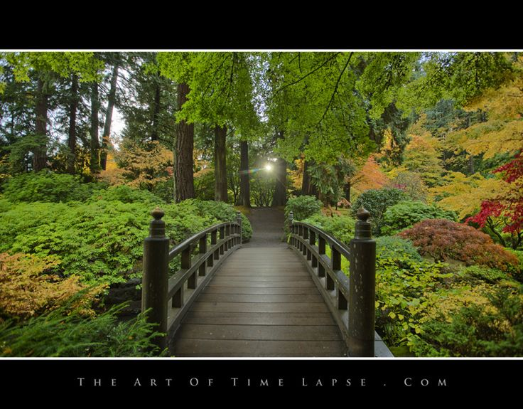 Portland Japanese Garden by John Eklund, via 500px