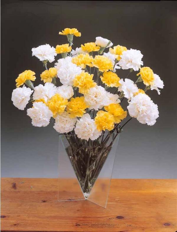 17 best images about fleurs couper on pinterest yellow for Bouquet de fleurs jaunes