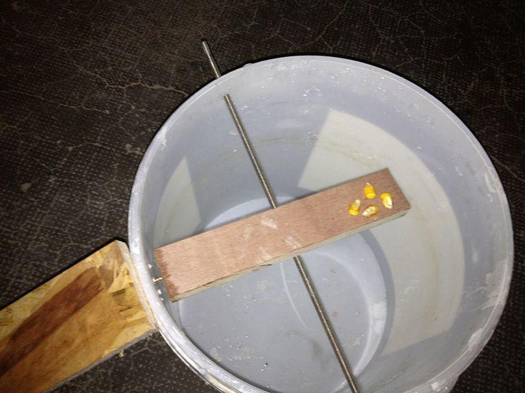 Je vous présente comment fabriquer un piège à souris, ou même à rats, de construction simple, rapidequi capture les souris vivantes
