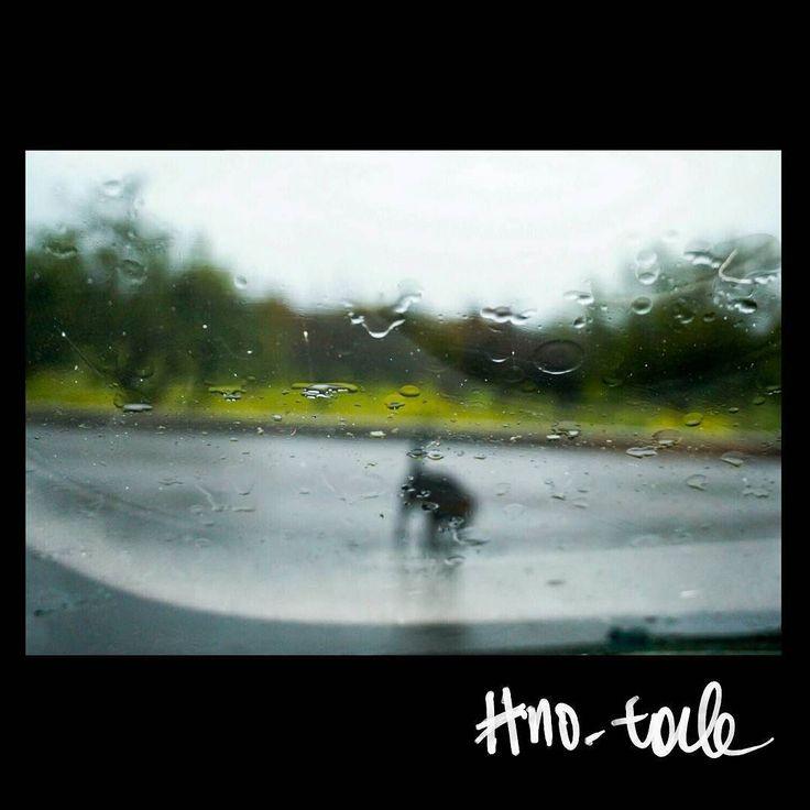 No tale #skantzman #no_tale #heraklion #crete #dog #stray_dog #kodakchrome #digital #sonya5000 #rain #flash #manolisskantzakis #photography