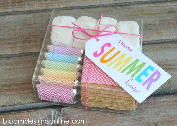 Summer S'mores Kits - Instructions & printable from BloomDesignsOnline.com (for purchase on Etsy)