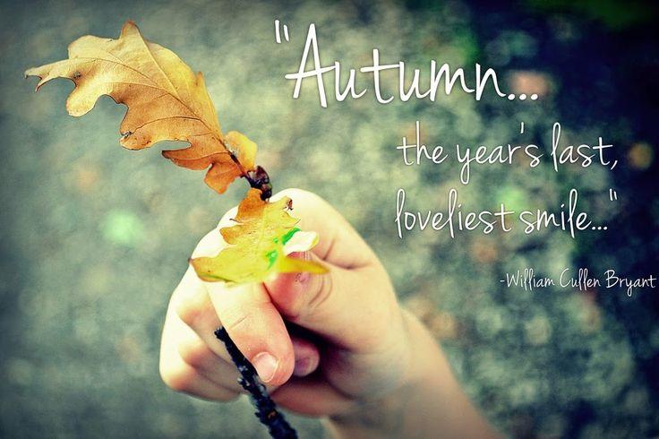 Autumn... in progress