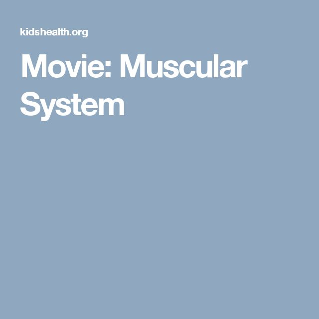 Movie: Muscular System