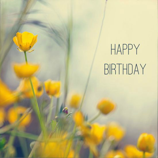 Happy Birthday Wishes Nature ~ Best images about happy birthday flower on pinterest wishes