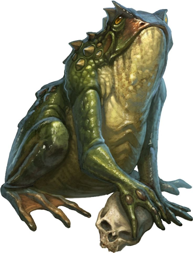 pathfinder giant frog - Google Search