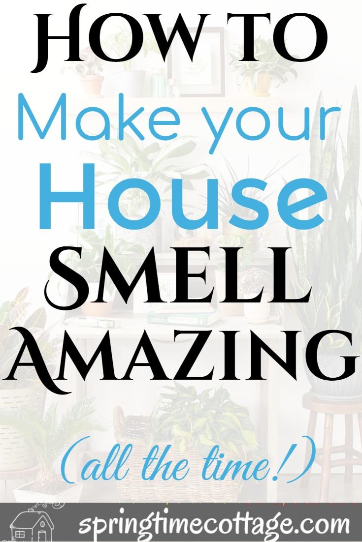 Smart Ways To Make Your Home Smell Wonderful With Images House