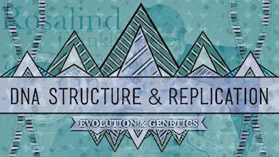 DNA: Estrutura e replicação  O Hank do canal Crash Course introduz a molécula do ácido desoxirribonucleico e exlpica como ela replica a si mesma em nossas células.  É lindo não? É simplesmente hipnotizante. É duplamente heli-excitante! Você pode perceber só de olhar o quão importante e extraordinário. É a molécula mais complicada existente e potencialmente a mais importante. É tão complexa que nós não sabíamos com o que ela se parecia até 60 anos atrás. Tão variadamente impressionante que se…