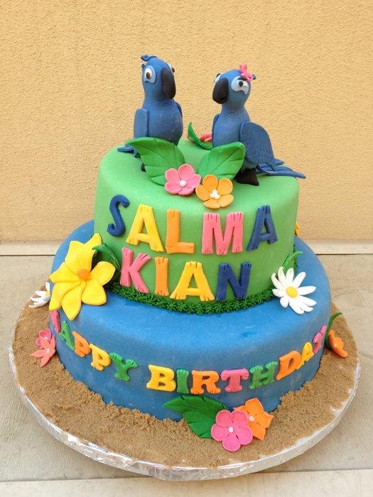 Best 25 Rio birthday cake ideas on Pinterest Rio birthday